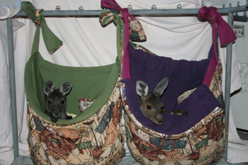 pouches by Lesley